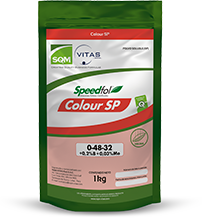 Speedfol® Colour SP